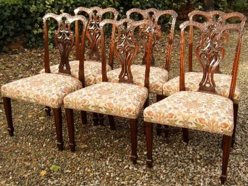 A Set of 6 Chippendale Chairs